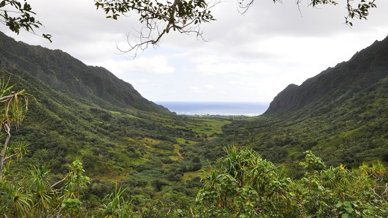 Action! Hawaii film and television production thrives